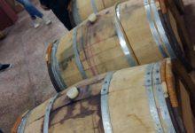 Wine tasting slovenia (11)