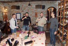 Wine tasting slovenia (23)