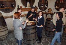 Wine tasting slovenia (25)