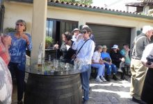 Wine tasting slovenia (26)