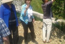 Wine tasting slovenia (9)