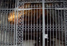 Postojna caves (4)