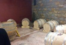 Wine tasting slovenia (10)