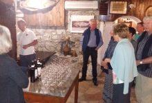 Wine tasting slovenia (13)