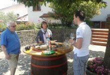 Wine tasting slovenia (5)