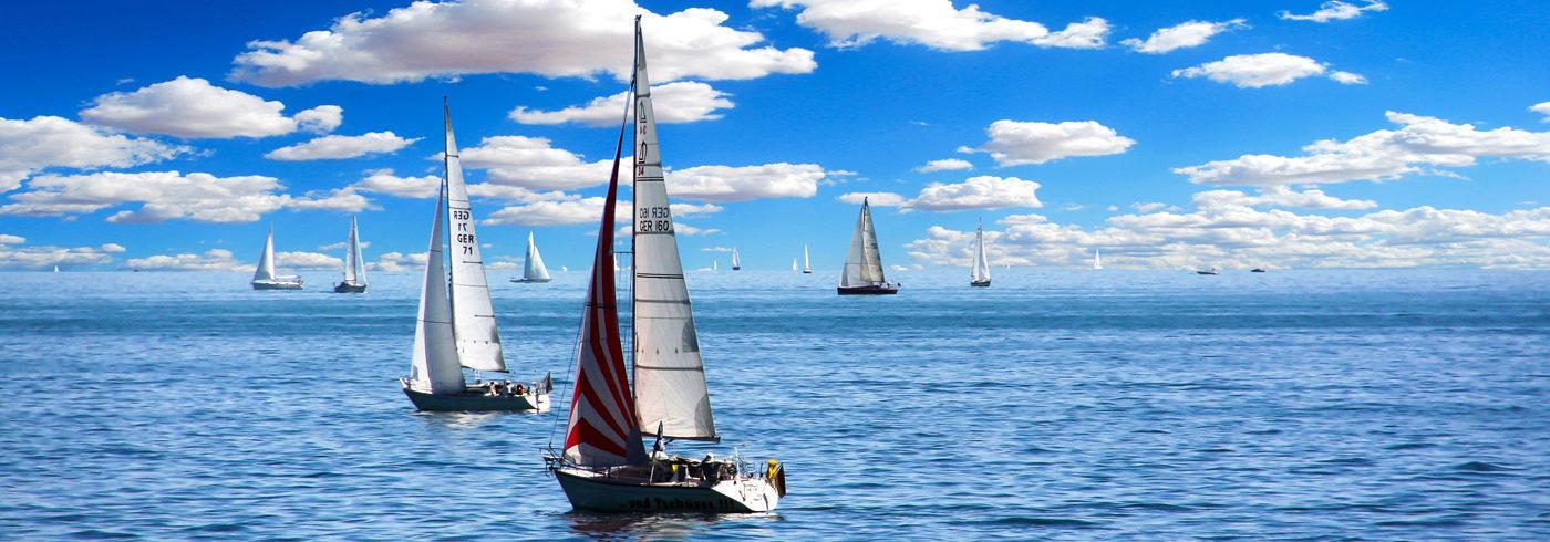 free_sailing_c